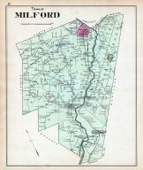 Millford Town, Otsego County 1903
